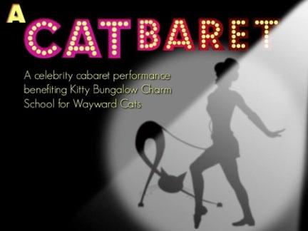 Catbaret